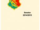 Seite 029 Senator 2014 2015 - noch nicht fertig-p1